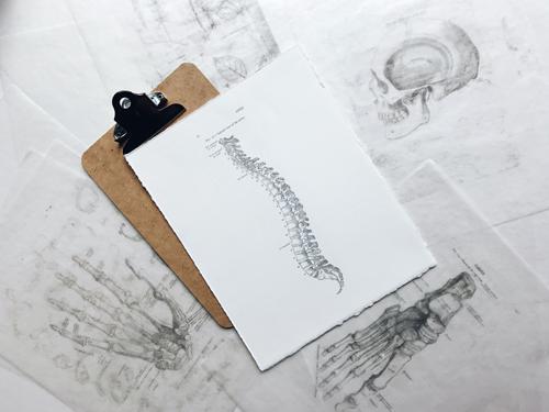 Physiotherapie Salzburg Dr. Planitzer Alexander